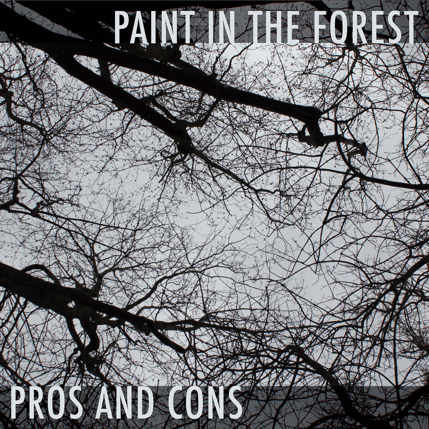 Pros and Cons - Paint in the Forest - album art